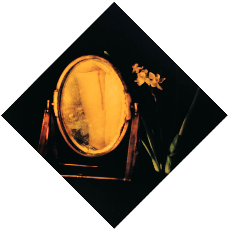 Chen Lingyang, January Narcissus, 1999-2000 From the series Twelve Flower Months Colour photograph, dimensions unknown M+ Sigg Collection, M+, Museum for Visual Culture, Hong Kong