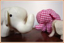 Elefantenherde (c) Anna
